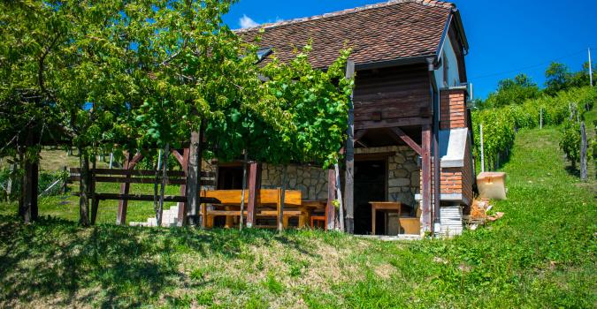 Wine Hill - kuća za odmor